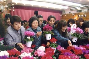 チャリティー花 のコピー.jpg